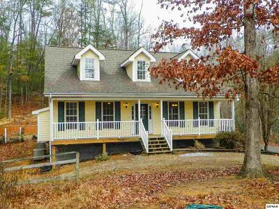 Sevierville Single Family Home For Sale: 3464-3 Obes Way