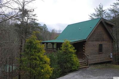 Gatlinburg Single Family Home For Sale: 1634 Lake Drive