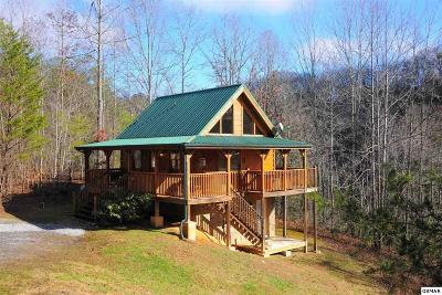Gatlinburg Single Family Home For Sale: 1646 Lake Drive