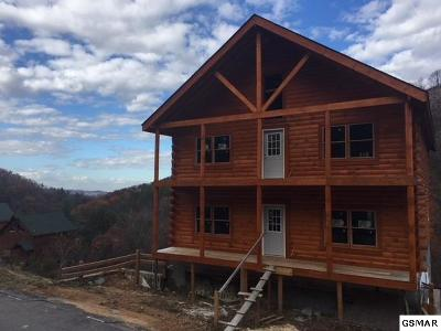 Sevier County Single Family Home For Sale: 1119 Autumn Path Way
