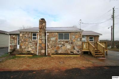 Sevierville Single Family Home For Sale: 457 Rolen Rd