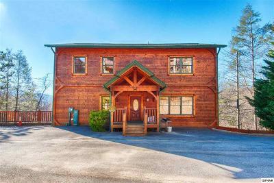 Gatlinburg Single Family Home For Sale: 810 Great Smoky Way