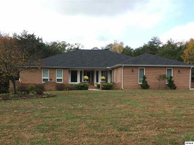 Dandridge Single Family Home For Sale: 2099 Ranch Rd.
