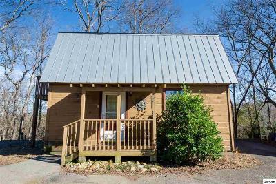 Sevierville Single Family Home For Sale: 903 Sunrise Blvd