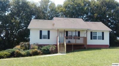 Dandridge Single Family Home For Sale: 549 Joshua Dr