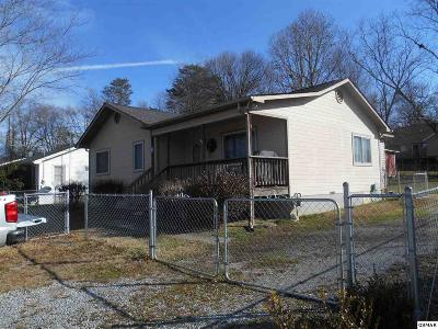 Pigeon Forge Single Family Home For Sale: 209 Valley