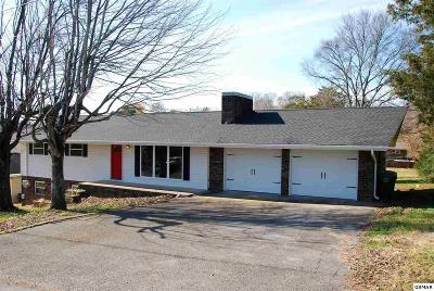 Sevierville Single Family Home For Sale: 1410 Hillcrest Drive