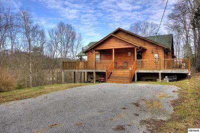 Sevierville Single Family Home For Sale: 1135 Sugar Loaf Rd.