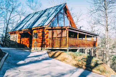 Sevier County Single Family Home For Sale: 3823 Dollys
