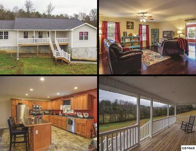 Sevier County Single Family Home For Sale: 764 Sharp Road