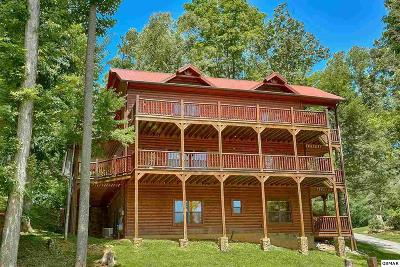 Gatlinburg Single Family Home For Sale: 1838 Elk Springs Way