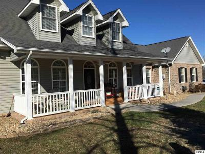 Sevierville Single Family Home For Sale: 285 Burning Oaks Drive