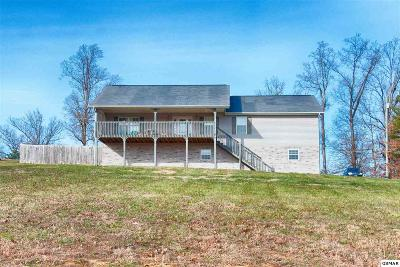 Sevierville Single Family Home For Sale: 1304 Deer Meadows Road