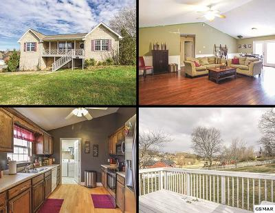 Sevierville Single Family Home For Sale: 1971 Big Buck Lane