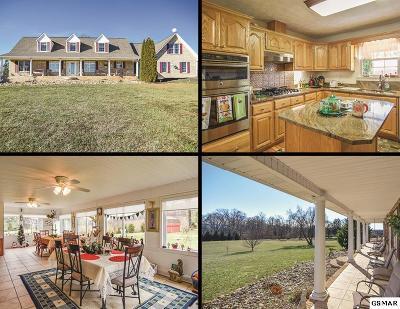 Dandridge Single Family Home For Sale: 1054 San Martino Drive