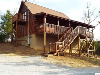 Sevierville Single Family Home For Sale: 104 Christy Way