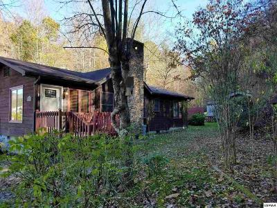 Gatlinburg Single Family Home For Sale: 810 Glades Rd