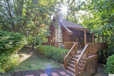 Pigeon Forge Single Family Home For Sale: 3003 Eagles Claw