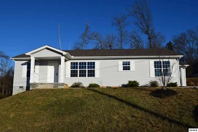 Dandridge Single Family Home For Sale: 1114 Case View Rd