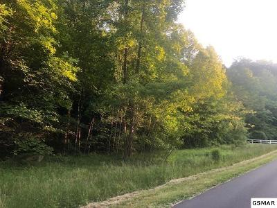 Residential Lots & Land For Sale: Tract 4 Johns Branch Road