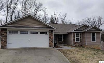 Sevierville Single Family Home For Sale: 2009 Infinity Ln