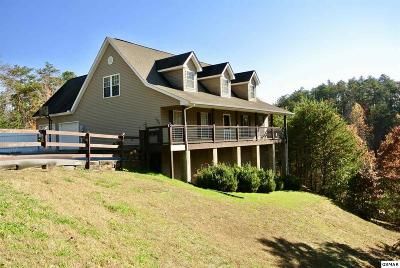 Sevier County Single Family Home For Sale: 1094 Sharp Hollow Rd