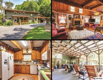 Sevier County Single Family Home For Sale: 4142 Wilhite Road