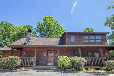 Pigeon Forge Single Family Home For Sale: 647 Kings Hills