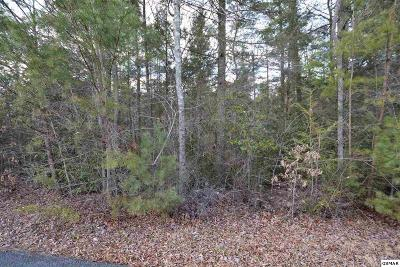 Sevierville TN Residential Lots & Land For Sale: $35,000
