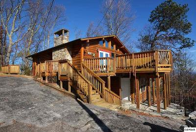 Gatlinburg Single Family Home For Sale: 1166 Ski View Drive