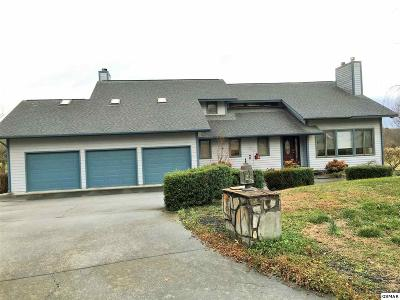 Sevier County Single Family Home For Sale: 980 Boardly Hills Blvd