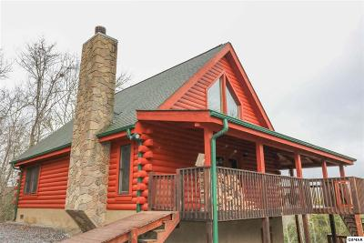 Sevierville Single Family Home For Sale: 2046 Bill Flagle Way