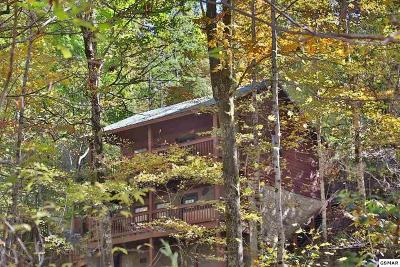 Sevierville Single Family Home For Sale: 1930 Regans Ridge