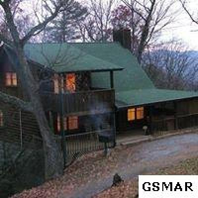 Sevierville Single Family Home For Sale: 1927 Rhododendron Lane