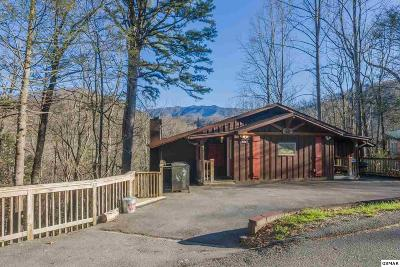 Gatlinburg Single Family Home For Sale: 508 Laurel Mountain Rd