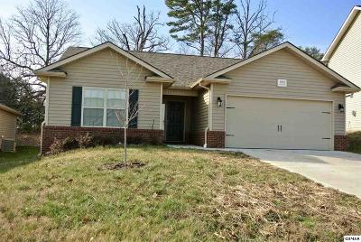 Knoxville Single Family Home For Sale: 1932 Mahogany Wood Trl
