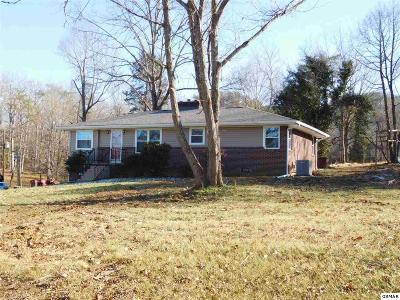 Knoxville Single Family Home For Sale: 8303 Pratt Road