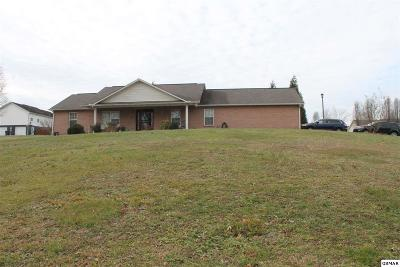 Sevierville Single Family Home For Sale: 1571 Turtle Dove Trl