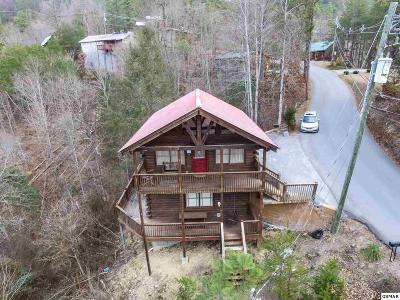 Sevier County Single Family Home For Sale: 1733 Walker Trail