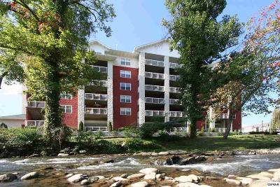 Sevier County Condo/Townhouse For Sale: 111 Jake Thomas Rd