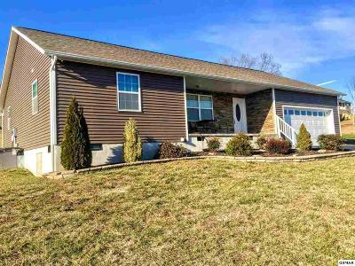 Kodak Single Family Home For Sale: 764 Tuckahoe View Trail