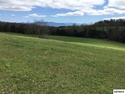 Dandridge Farm & Ranch For Sale: Ailey Rd.