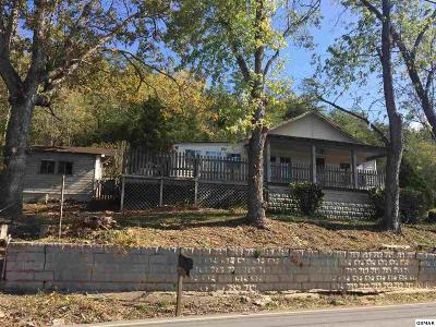 Sevierville Single Family Home For Sale: 2519 Maples Branch Rd