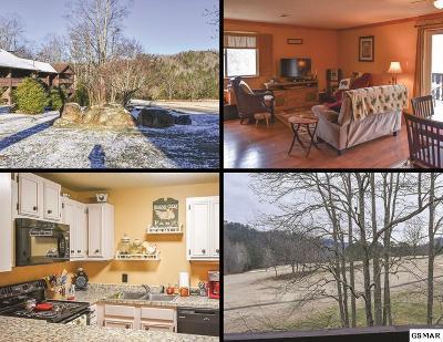 Gatlinburg Condo/Townhouse For Sale: 3815 E Parkway
