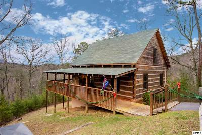 Sevierville Single Family Home For Sale: 1723 Bluff Ridge Rd