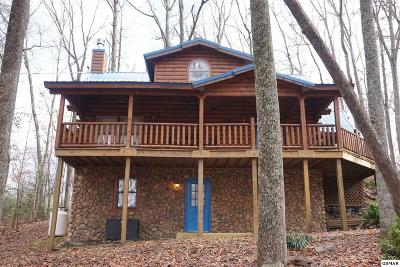 Sevierville Single Family Home For Sale: 2164 Red Bud Road