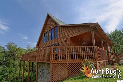 Sevierville Single Family Home For Sale: 960 Pine Mountain Rd