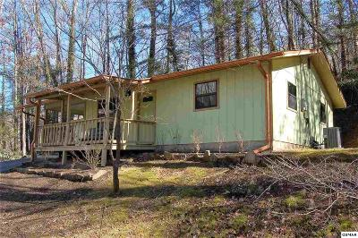 Sevierville Single Family Home For Sale: 2220 Cove Creek