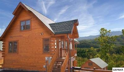 Sevierville Single Family Home For Sale: 2326 Top Of The World Drive