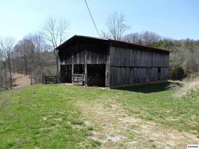Dandridge Farm & Ranch For Sale: +- 80 Acres Lower Rinehart Road